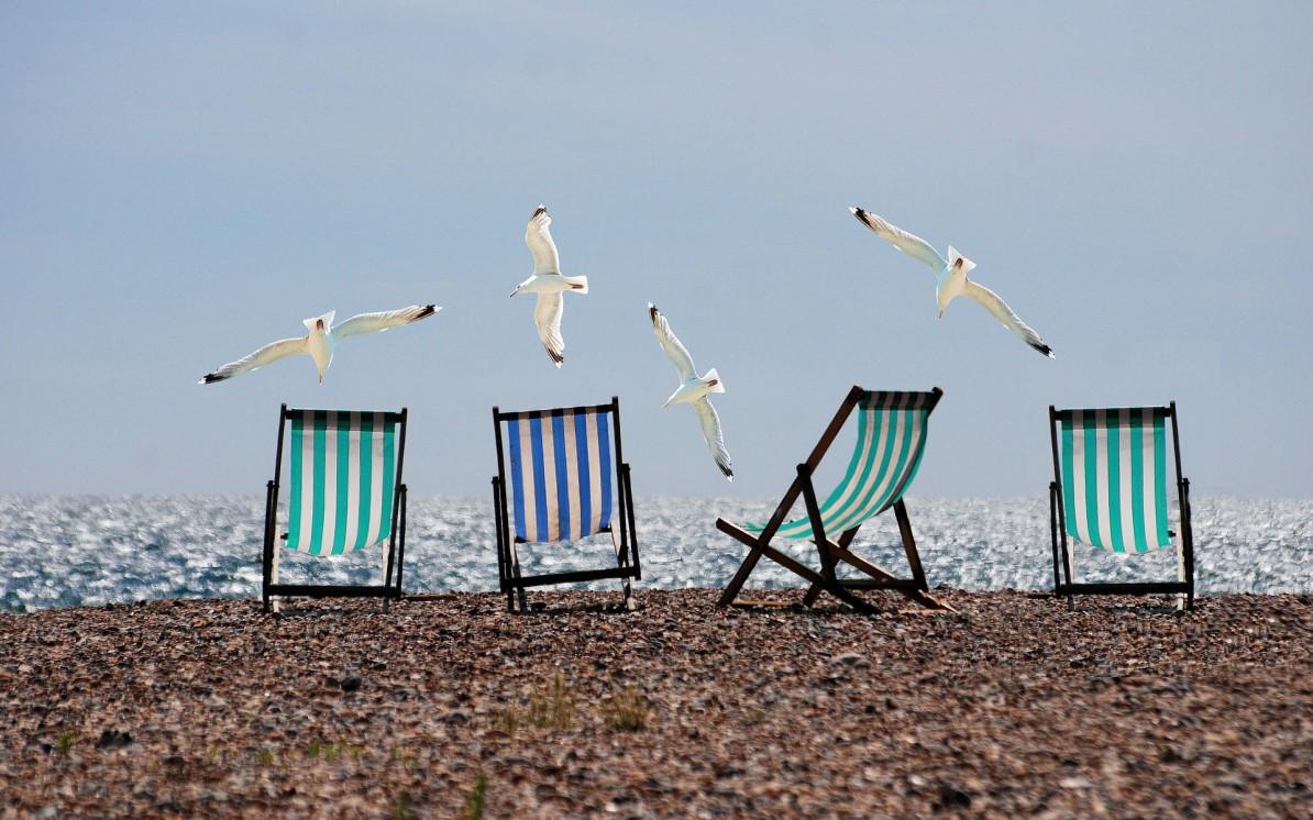 Möwen und Liegestühle am Strand